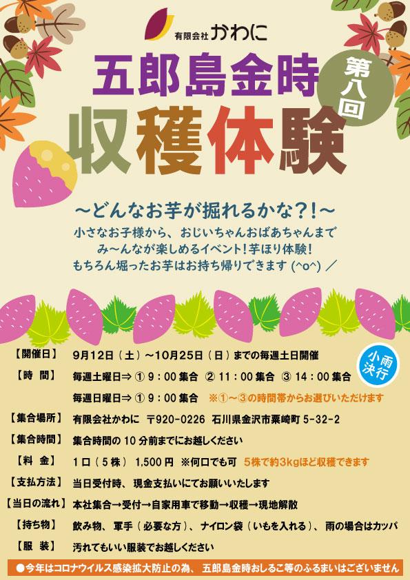 五郎島金時収穫祭